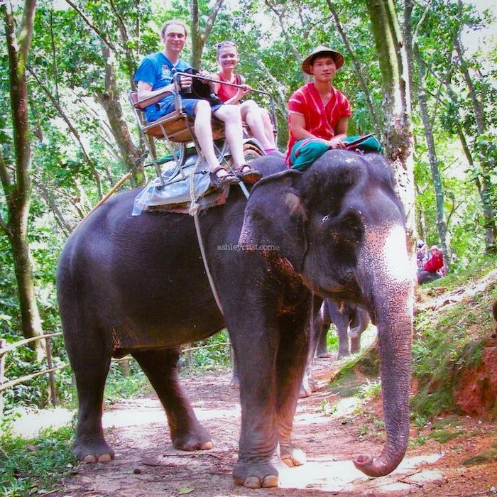 06_03_13 Siam Safari 1